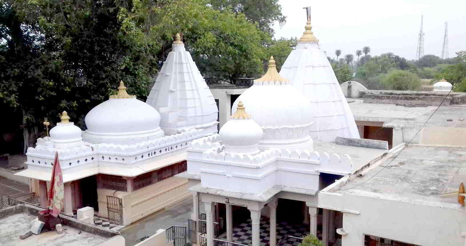 Sarneshwar Mahadev Ji Gangrar